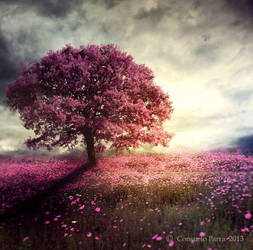 Spiritual  tree by Consuelo-Parra