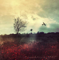 Forgotten words in a evening by Consuelo-Parra
