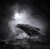 The Wicked  Raven by Consuelo-Parra