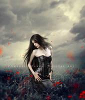 Rain of petals by Consuelo-Parra