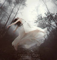 Desiderata by Consuelo-Parra