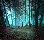 Fantasy forest- premium stock
