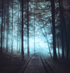 Rail forest- premium stock