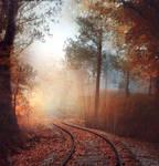 Autumn railroad - premium stock