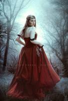 Crimson dreams by Consuelo-Parra
