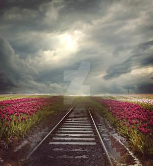 End of the rail - premium stock