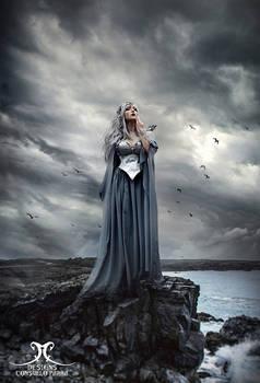 Queen of birds
