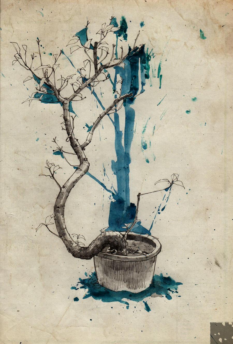 Fig tree b by N0tisme