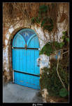 Door Of A Magical Butterfly