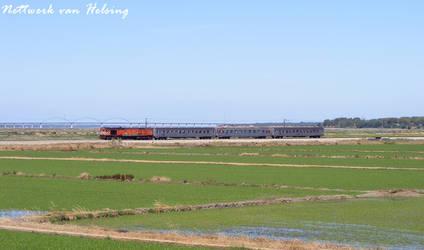 The tourists' train
