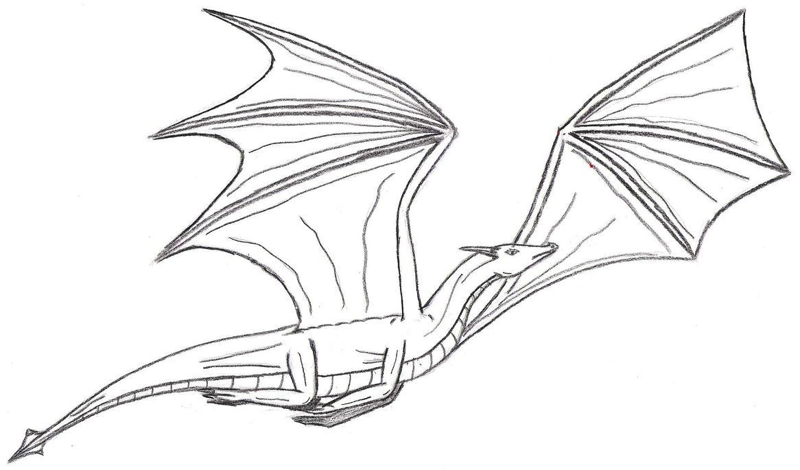 Flying Dragon-Outline by Denodon on DeviantArt