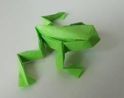 Frog by Kessukoofah