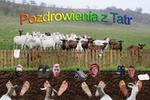 Postcard from the Tatra Mountains - Kamus Team