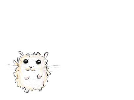 lil dwarf hamster by insanespamking