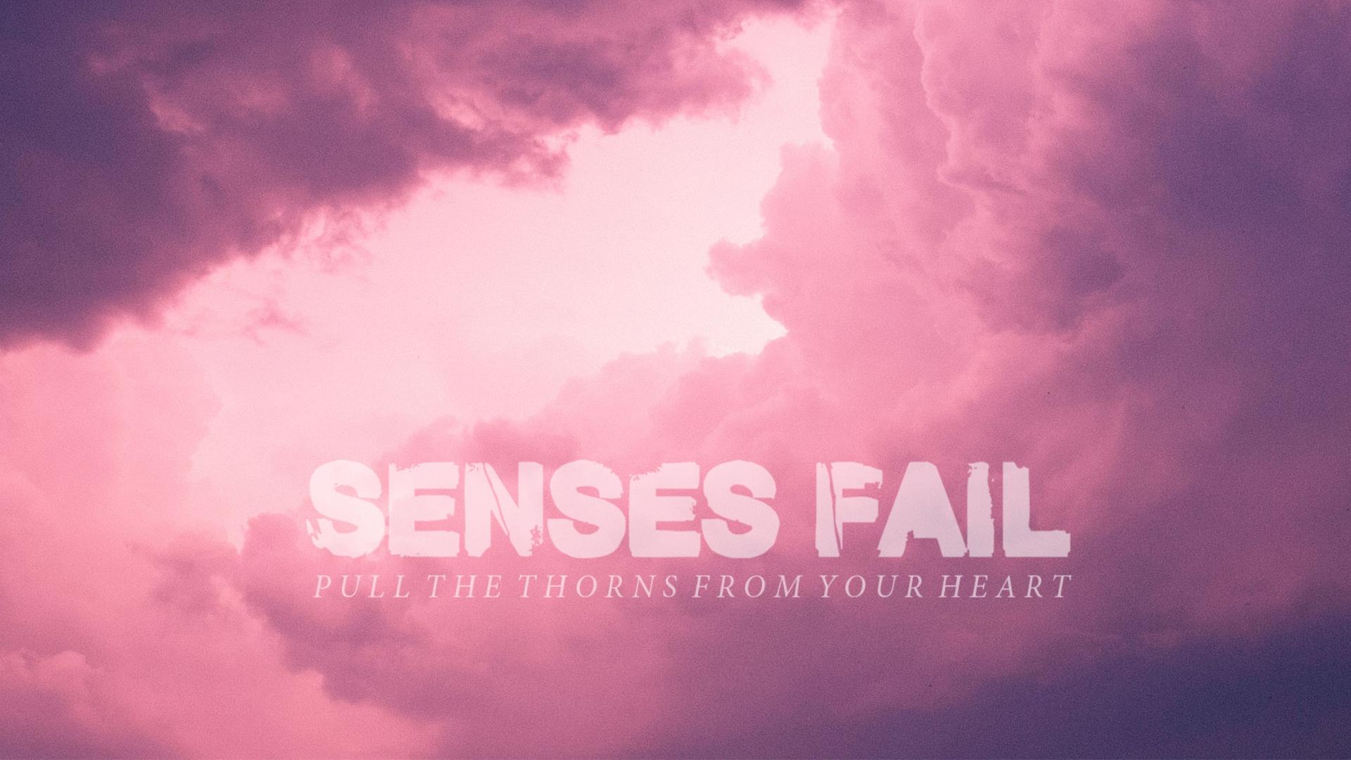 Senses Fail by paulogracioli666