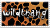 Wildthang - Cheetah by Zimmette-Stock
