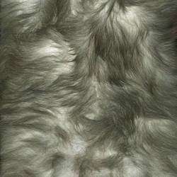 Texture - fur 001