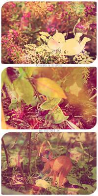 MOOMIN - Adventures in the garden