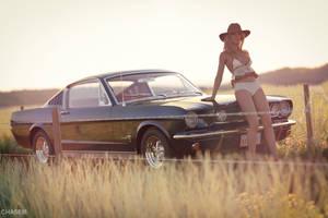 A short break (1965 Ford Mustang Fastback)