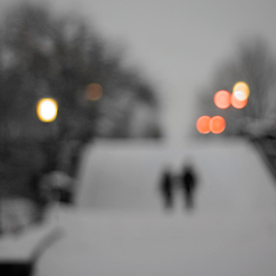 A Walk In The Snow by Spaezle