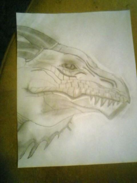 First_attempt_at_a_Dragon_by_Apocadawg.jpg