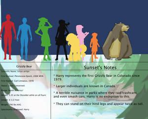 Jongojiverse Earth Proper Bestiary 8: Bear