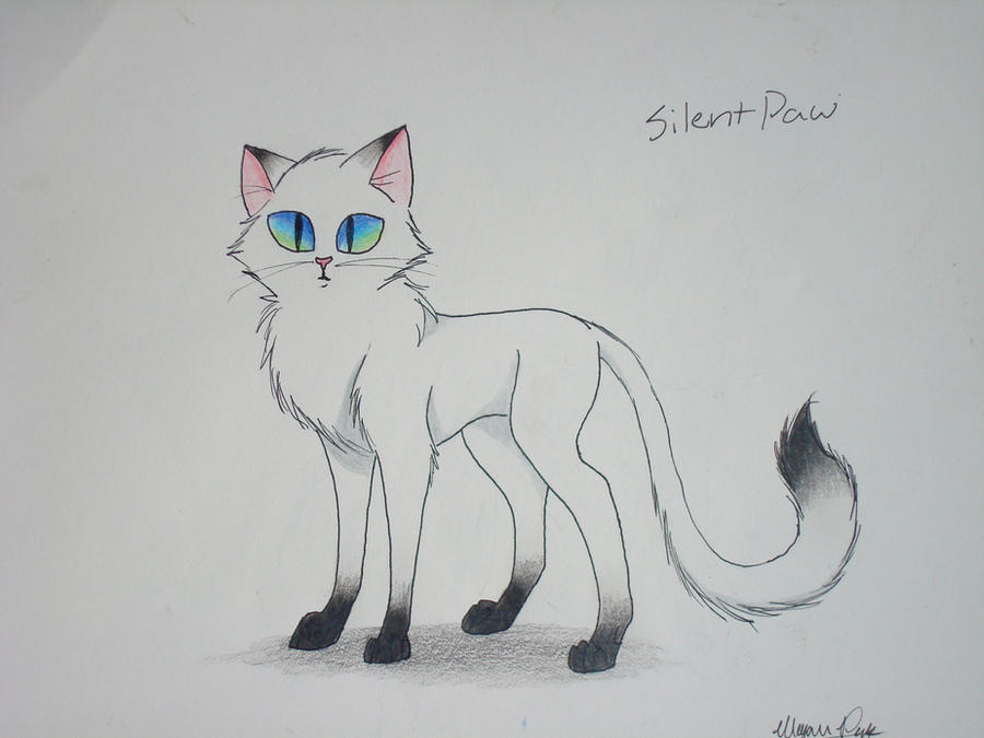 Warrior Cats Skyclan Territory: Warrior Cats: Untold Tales