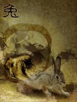 Rabbit Year by Akira-Miyashi