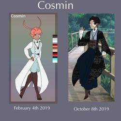 Cosmin progress