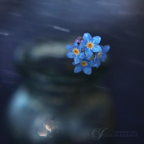Stormy days by Healzo