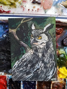 ATC// Owl for Paradoxsketchbook's exchange