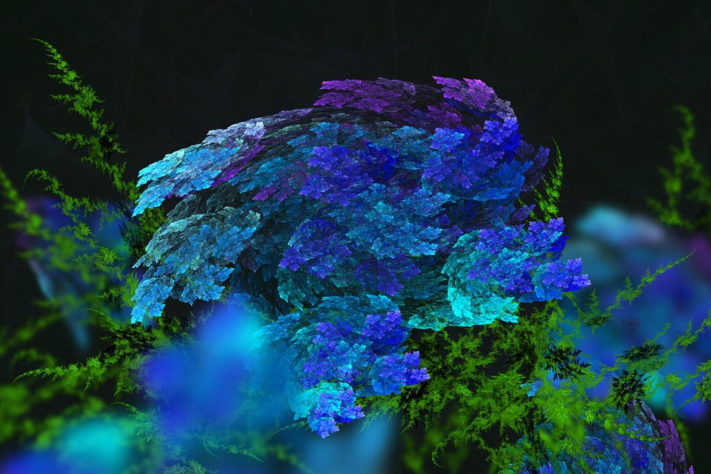 Hydrangeas by cedarlili