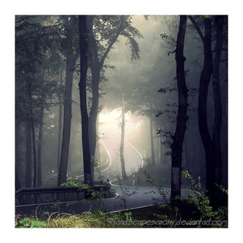 Autumn feelings No.3 by naturetimescape