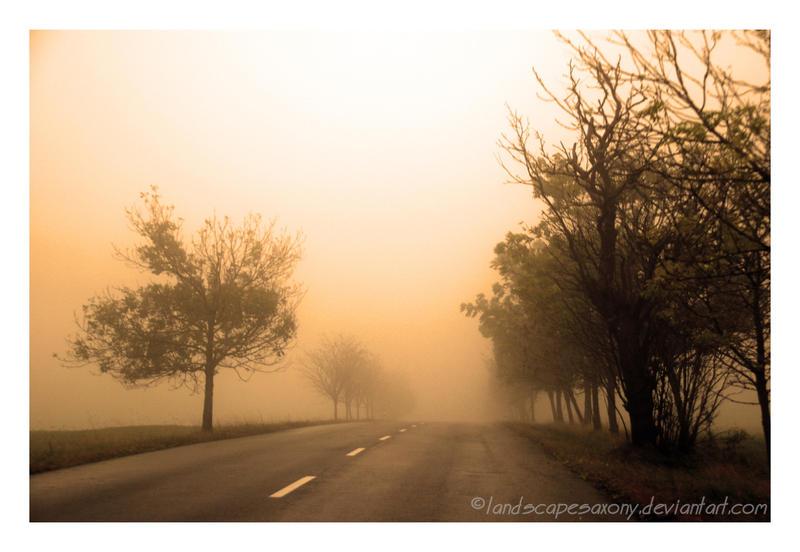 Autumn feelings no.47 by landscapesaxony