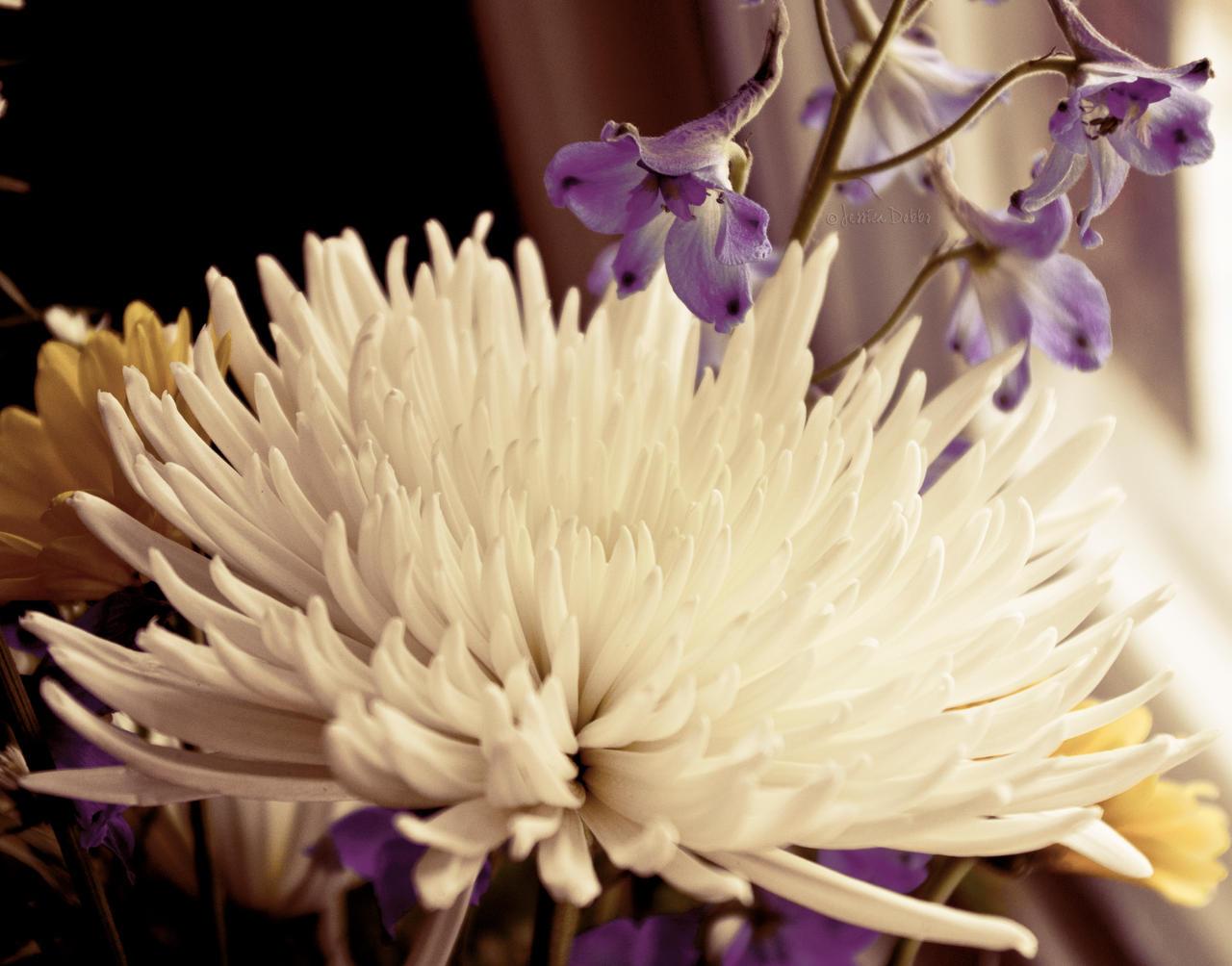 Grandmother's Flowers by JessicaDobbs