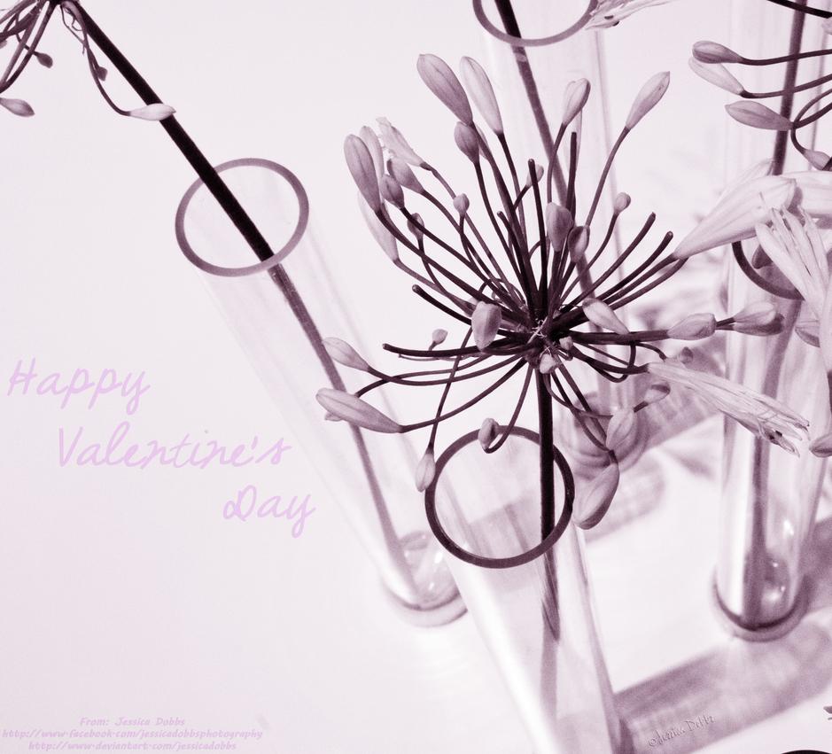 Happy Valentine's Day by JessicaDobbs