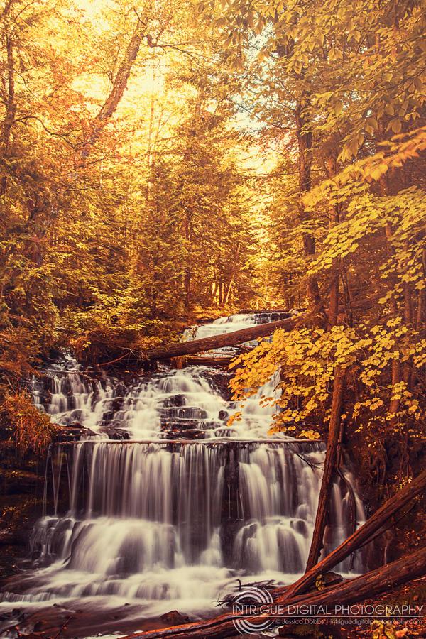 Golden Waterfalls by JessicaDobbs
