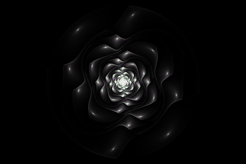 Dewey Rose by MiloticScale