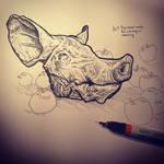 Pig head sketch