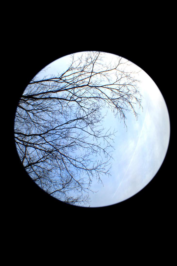 Like The Moon by Shanananans