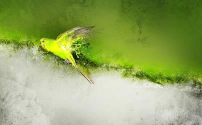 Tropic by ciR-e