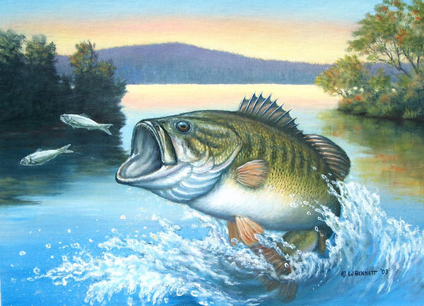 Bass after minnows by traits on deviantart for Bass fish painting