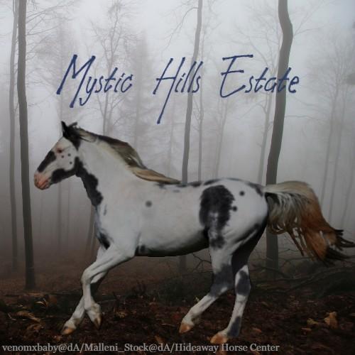 Mystic Hills Estate