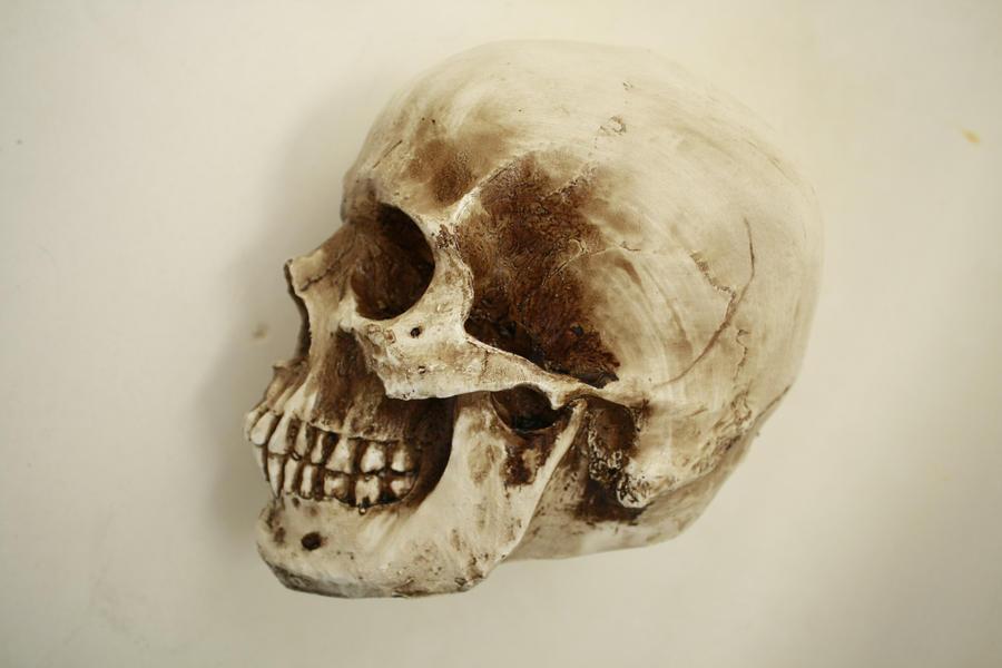 skull side by DangerouslyStock