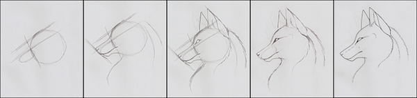 How To Draw - Wolf Head by Deazea