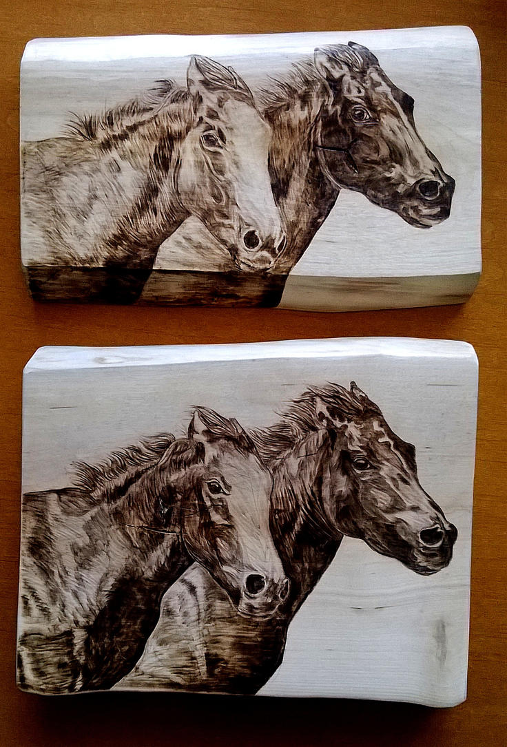 horses (pyrography / wood burning) by Art-Caren