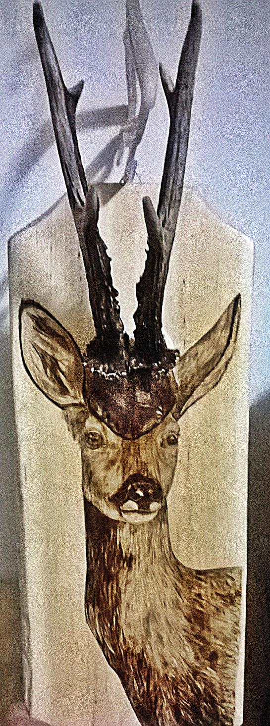 Roe deer by Art-Caren
