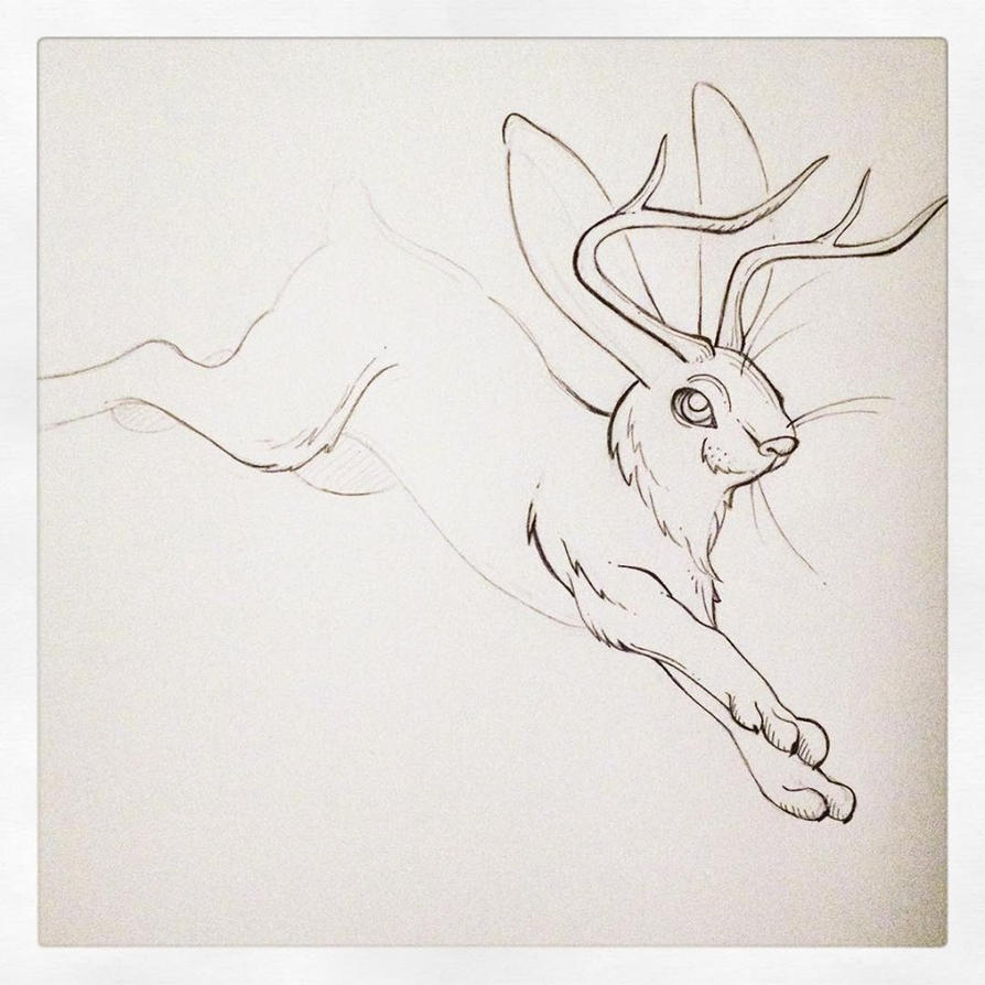 Jackalope Sketch by PinkBunnie