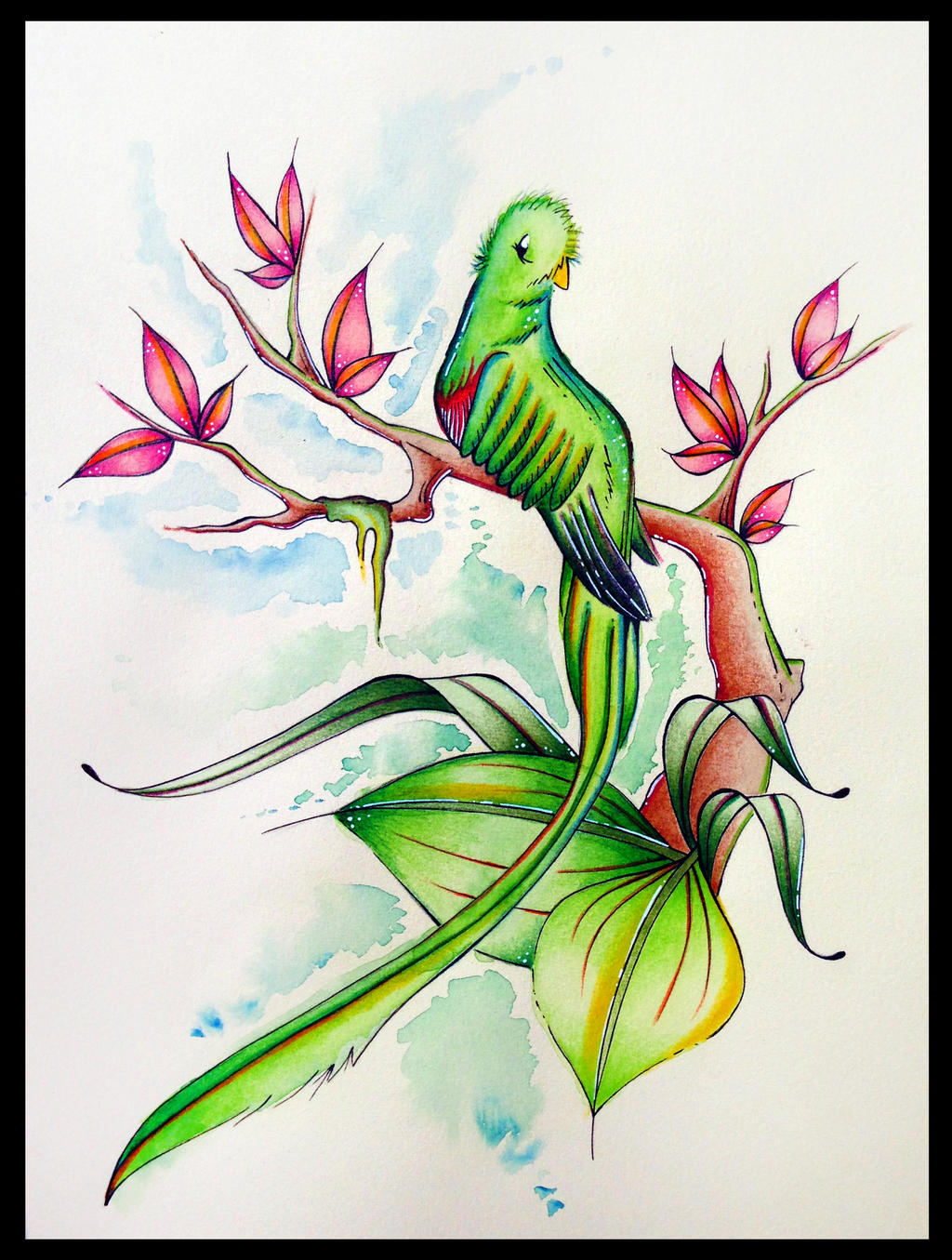 Resplendent Quetzal by PinkBunnie