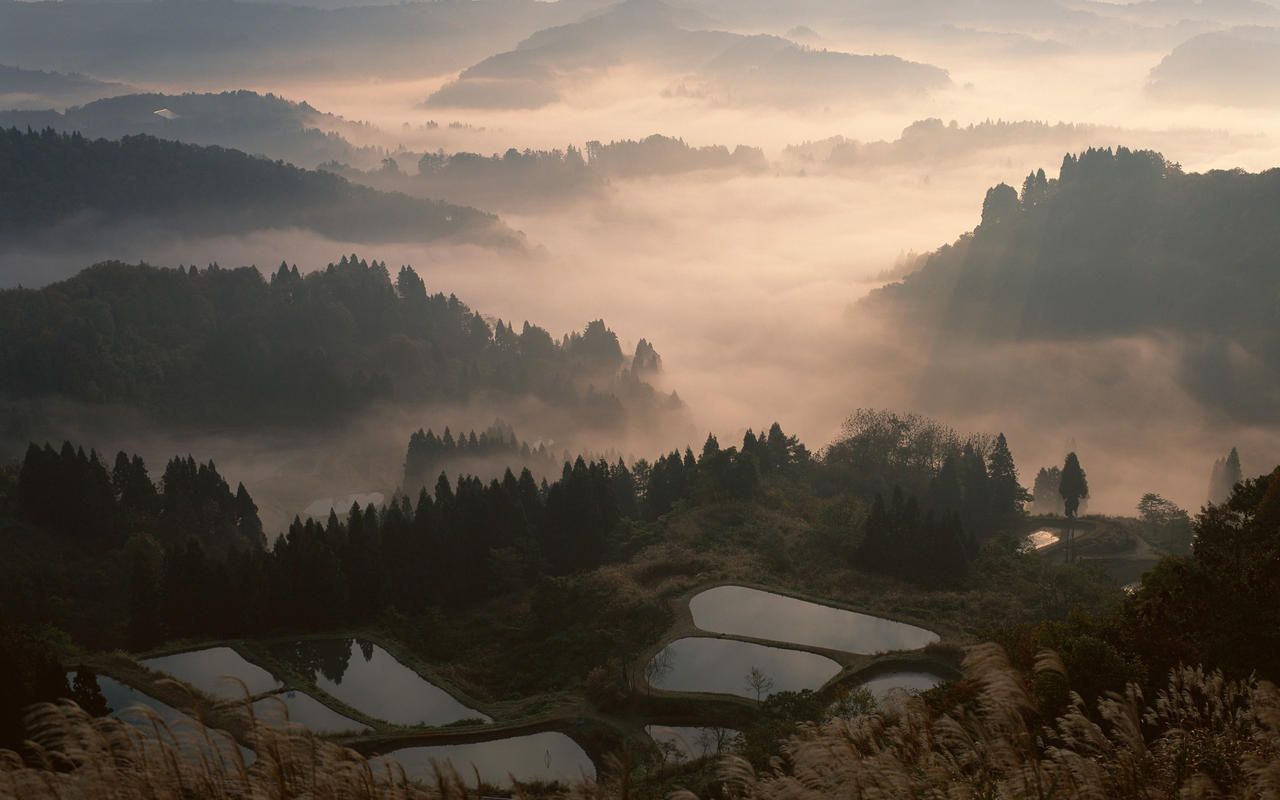 Japan Fog Landscape 2560x1600 By ElKaez